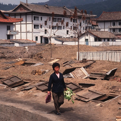 North Korea is Facing a Food Shortage, Should We Help?