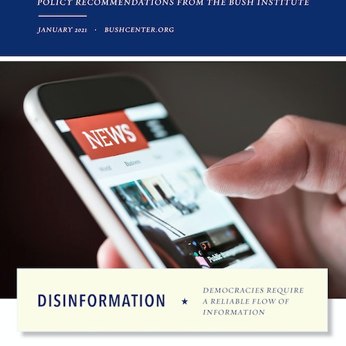 Disinformation: Democracies Require a Reliable Flow of Information