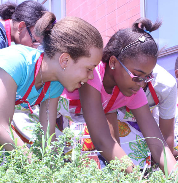 Harlem Children's Zone kids learning in a garden.  (via Harlem Children's Zone)